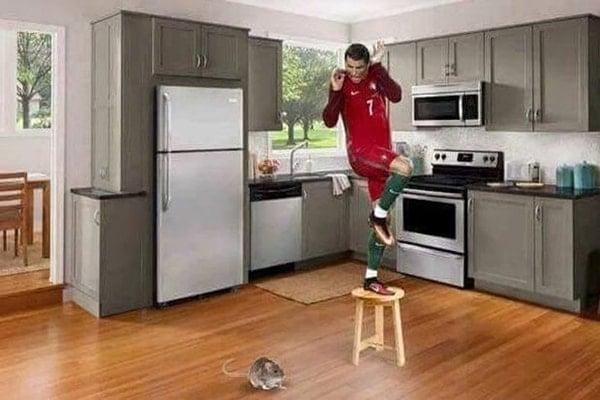 Foto Lucu Ronaldo versi EURO 2016 (3)