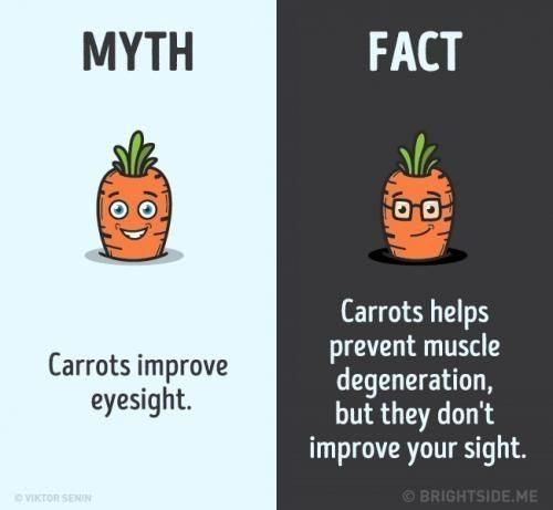 Mitos dan Fakta Tentang Wortel