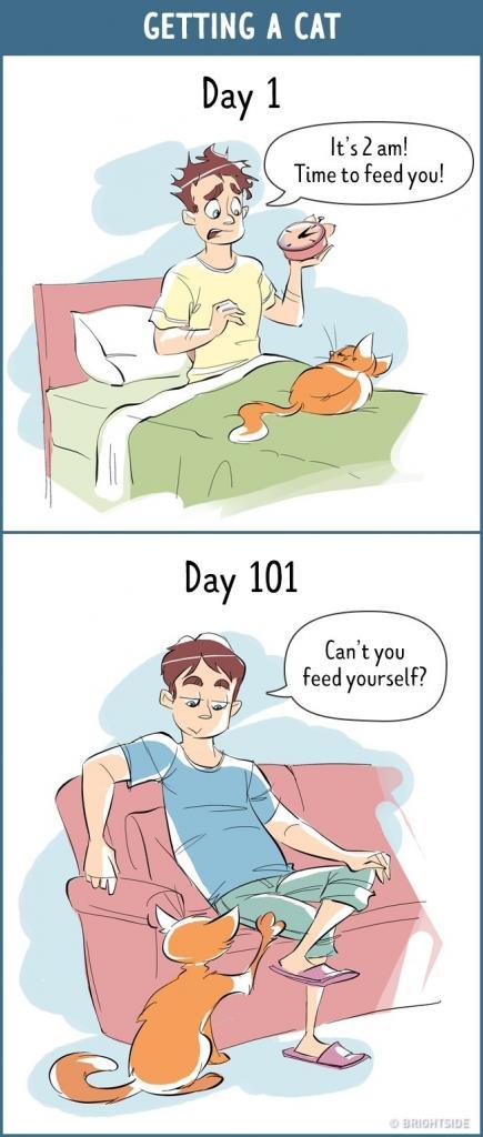 ilustrasi setelah 100 hari 07