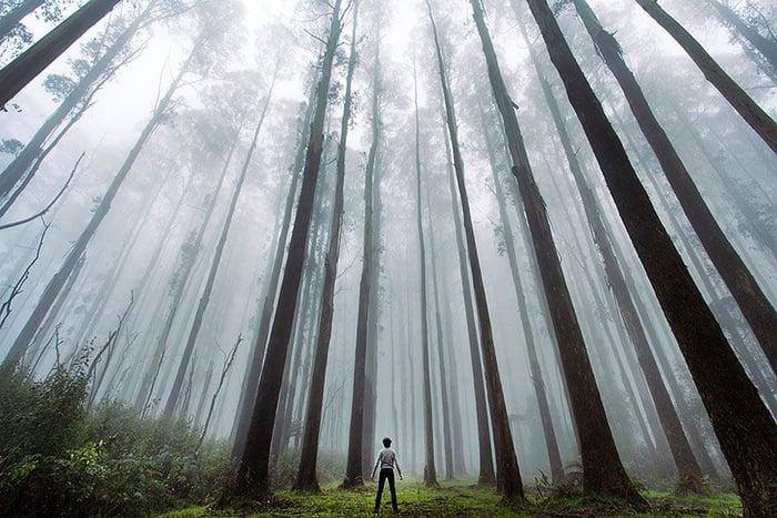 15 Bukti Betapa Kecilnya Manusia Di Alam Semesta Ini! 1