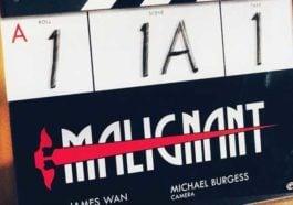 James Wan Malignant