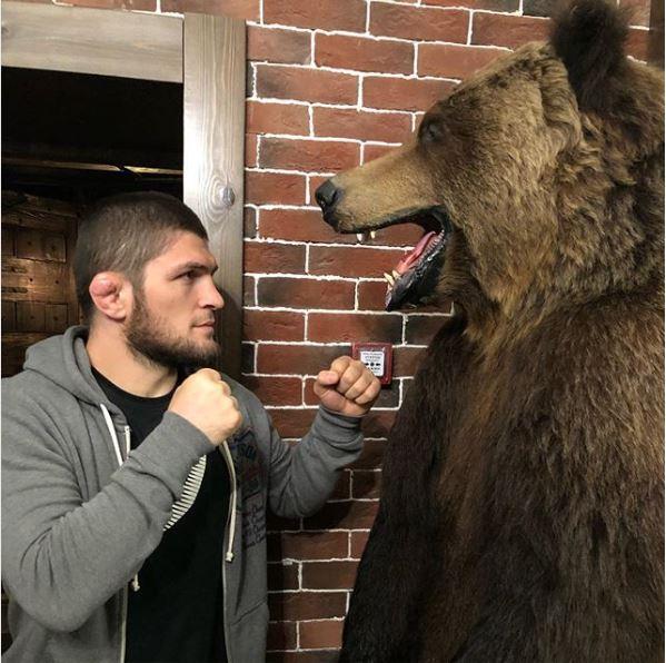 10 Fakta Tentang Khabib Nurmagomedov, Petarung Muslim Yang Berhasil Kalahkan McGregor! Lawan Beruang