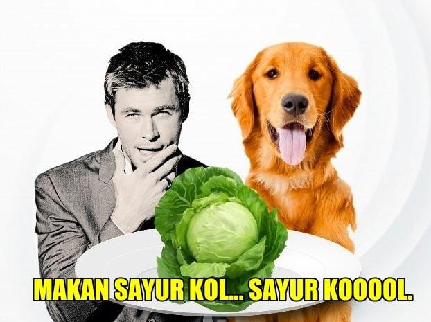 10 Meme Lucu 'Pakai Sayur Kol' Ini Akan Bikin Kamu Ngakak Enggak Ketolongan! 10