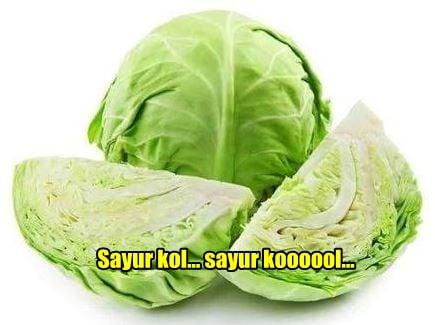 10 Meme Lucu 'Pakai Sayur Kol' Ini Akan Bikin Kamu Ngakak Enggak Ketolongan! 7