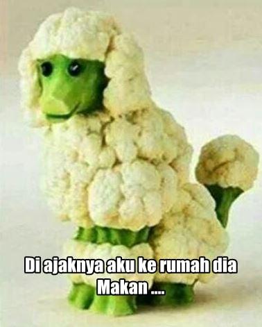 10 Meme Lucu 'Pakai Sayur Kol' Ini Akan Bikin Kamu Ngakak Enggak Ketolongan! 9