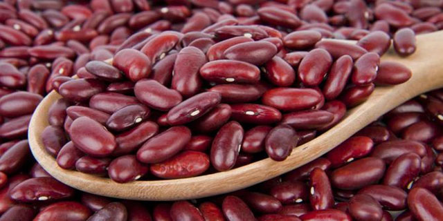 Duh, 5 Makanan Yang Biasa Kita Makan Ternyata Bisa Meracuni Manusia Sampai Mati! Kacang Merah