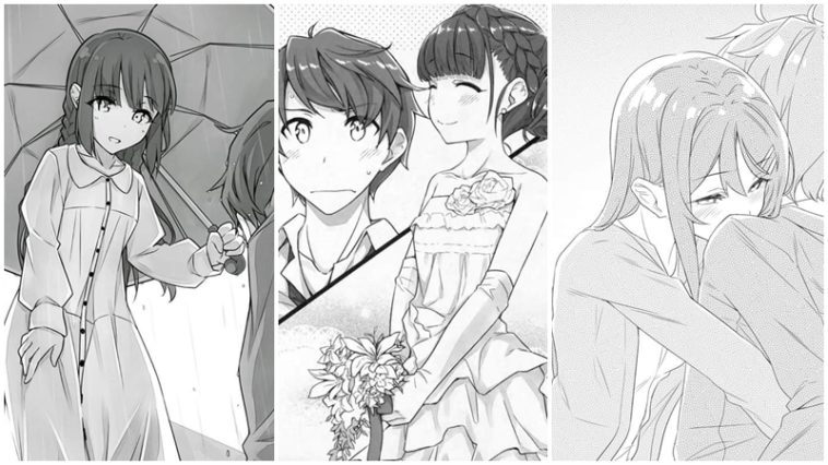 Light Novel Seishun Buta Yarou