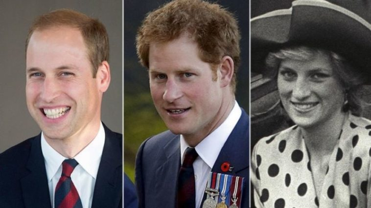Menyedihkan, Inilah Janji Pangeran William Kepada Putri Diana Yang Tak Bisa Ditepati Dafunda Gokil