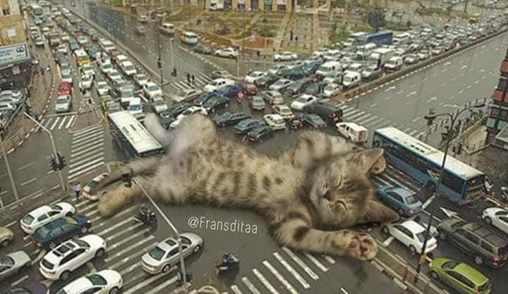 Monster Kok Lucu, Berikut 12 Foto Editan Saat Kucing Menjadi Raksasa Dan Menguasai Dunia! 3