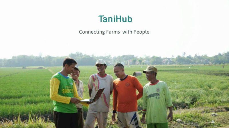 Peran TaniHub5
