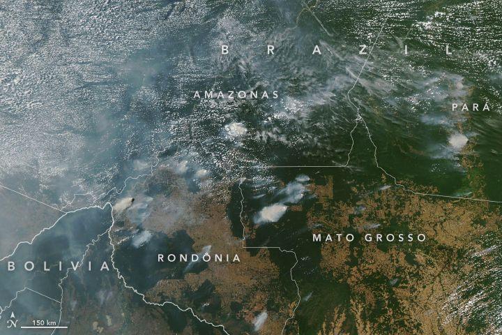 Foto Kebakaran Hutan Amazon