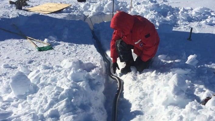 Temuan Ilmuwan Di Antartika