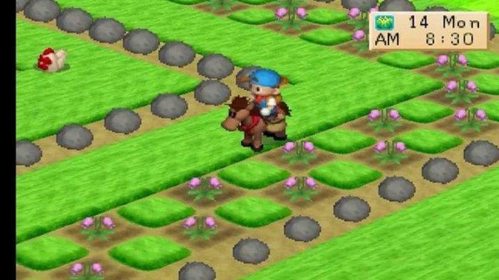 Cara Dapat Kuda Harvest Moon 1