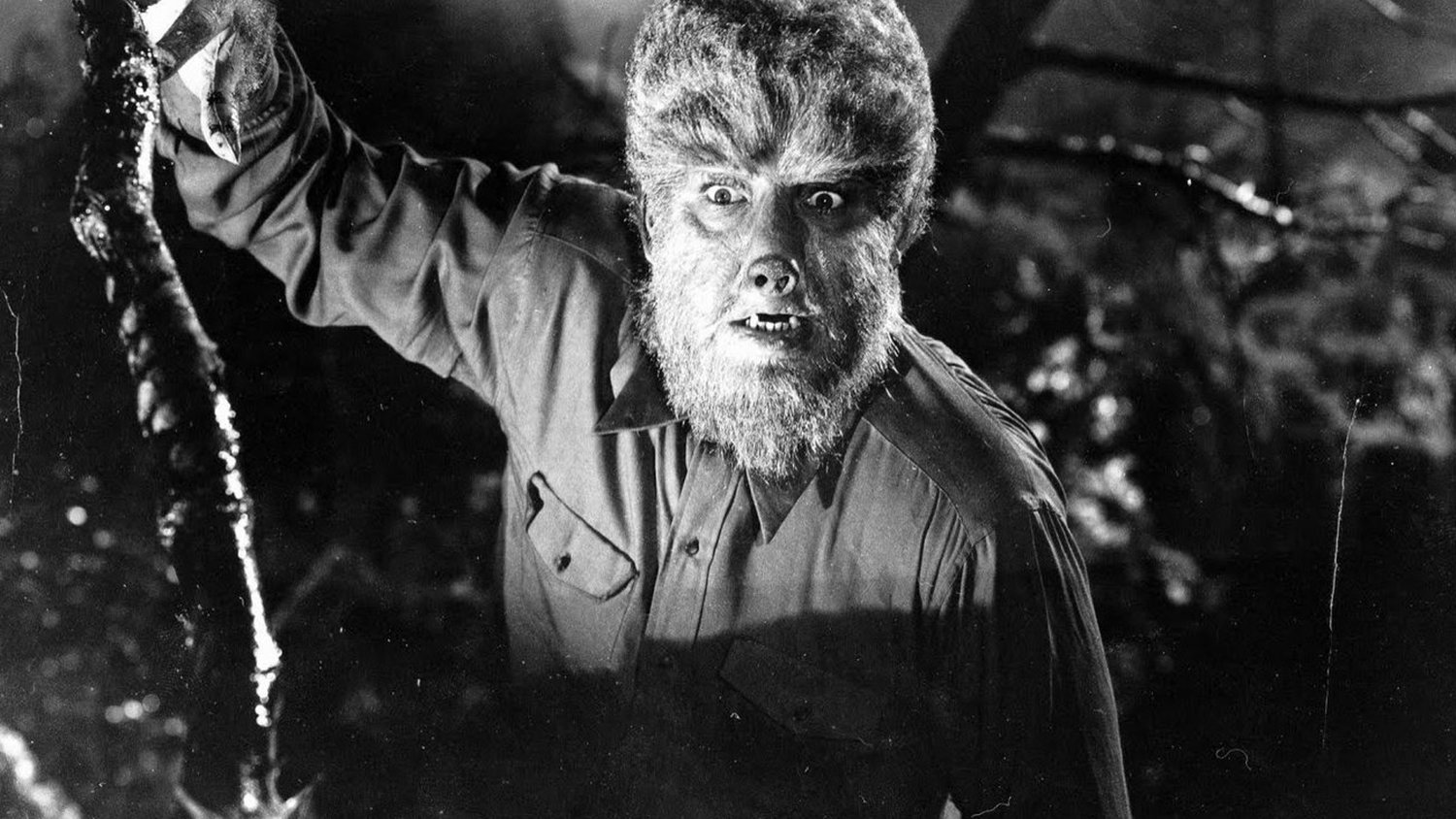 Wolfman 1941 |  Universal Pictures