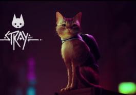 Stray, Game Adventure Futuristik Yang Sangat Mengagumkan