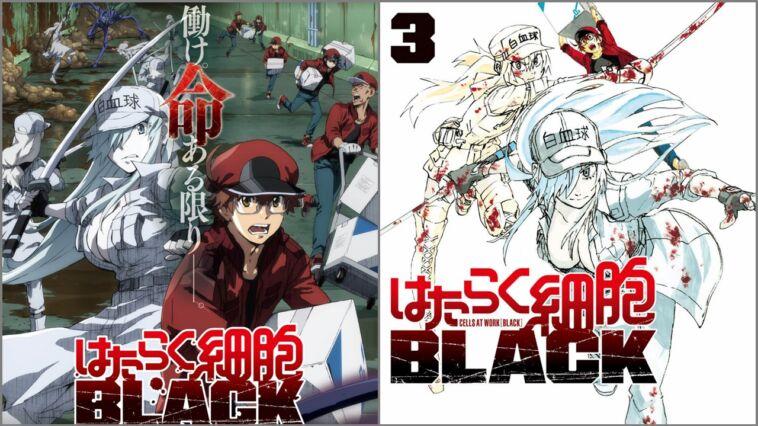 Seiyuu Hataraku Saibou Black
