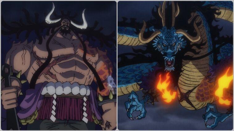 Penjelasan Tentang Buah Iblis Kaido