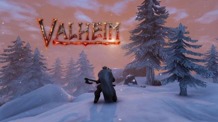 Cheat Commands Valheim