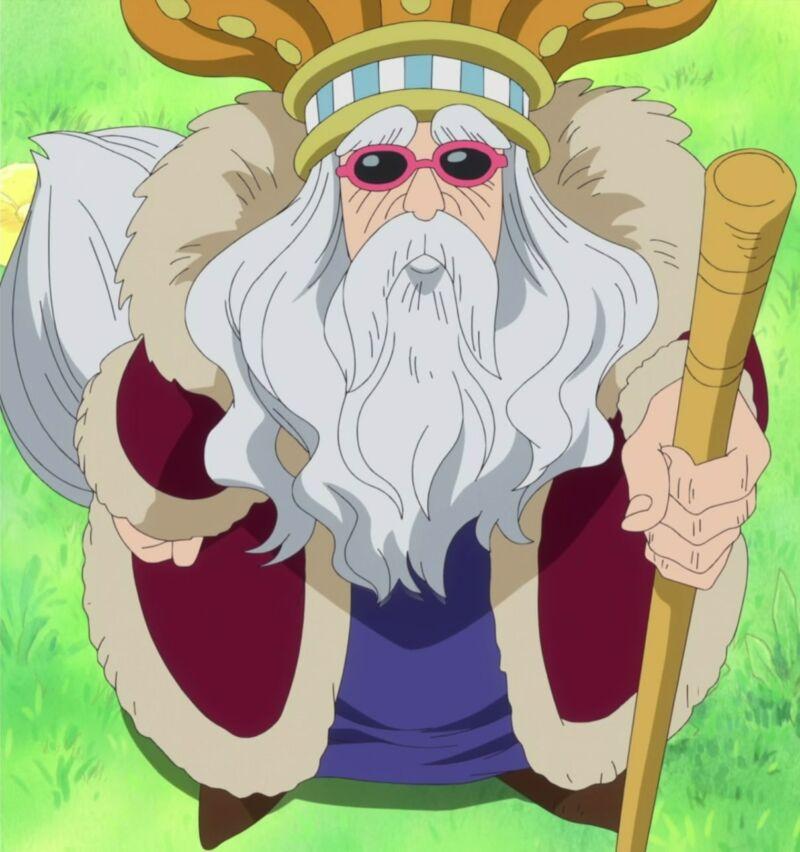 Gancho + Raja One Piece